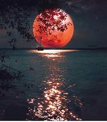 Segunda indo...  Boa madruga... #blogauroradecinemadeseja  #amazing #moonlight #moon #lua #luar #luna #cielo #sky☁