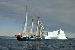 Sailing to Kongsfjorden