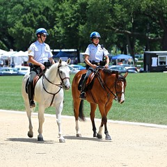 Mounted Police on the Mall