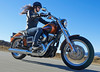 miniature Harley-Davidson 1690 DYNA LOW RIDER FXDL 2016 - 10