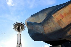 14 space needle