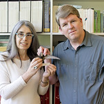 University of British Columbia researchers Ildiko Szabo and Darren Irwin are unravelling the mystery of how a House Swift ranged across the Pacific from Asian to Ladner, British Columbia. Photo: Derek Tan, Beaty Biodiversity Museum, University of British Columbia.