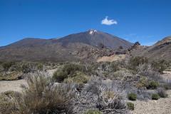 Llano de Ucanca Parco nazionale del Teide_0067
