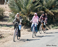 Rissani, Morocco 2008