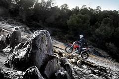 Yamaha XT 660 R 2011 - 14