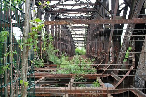 Die Liesenbrücken