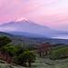 Fuji in the pink morning glow by shinichiro*@TOHOKU