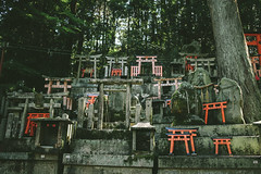 Fushimi Inari is not just about the gates <3