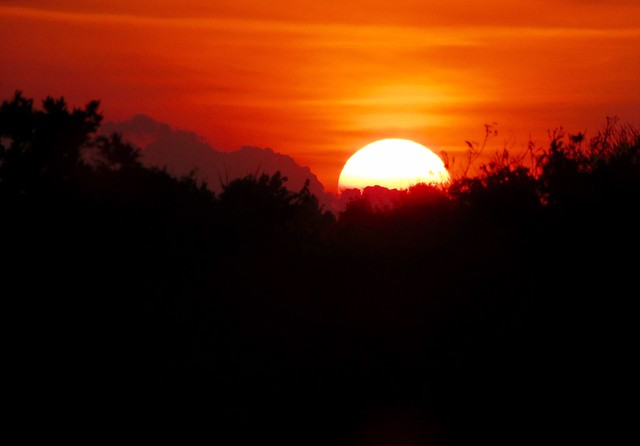 Sunset Sun Silhouette Beauty In Nature Scenics Orange Color Nature Majestic Tree Tranquil Scene Moon Tranquility Sky Outdoors Astronomy No People Landscape Solar Eclipse Space Day Justgphotors North Carolina
