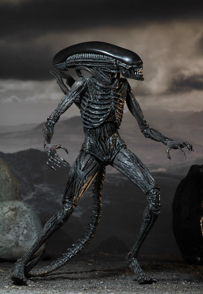 NECA 異形:聖約 【異形】Alien: Covenant Xenomorph