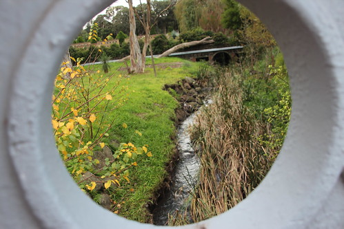 Flowing through Fawkner Cemetery - 100 photos of Merlynston Creek