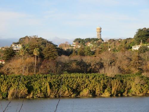 outdoor urban river whanganui tree tower bastiahill newzealand