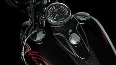 Harley-Davidson FLSTSB 1584 SOFTAIL CROSS BONES 2008 - 19