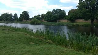 Hampton Wick Pond