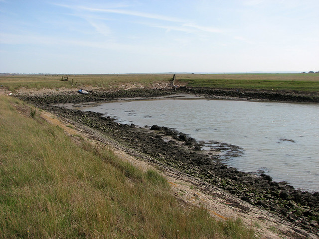 Ferry Marshes, Isle of Sheppey