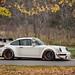 RWB Porsche 964 + Colors
