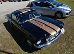 1966 Shelby Mustang G.T.350H