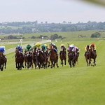 Tattersalls Irish 1000 Guineas
