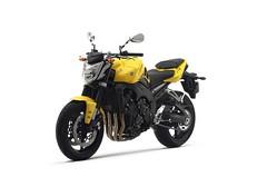 Yamaha FZ1 1000 2015 - 13
