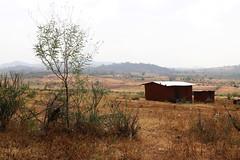 Rural Landscape in Kenya