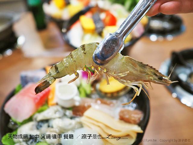 天物成鍋 台中 火鍋 逢甲 餐廳  69