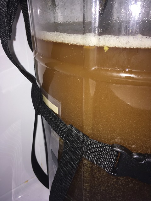 Codependent Droid in the carboy