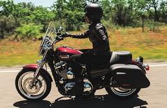 Harley-Davidson XL 1200 T SUPERLOW 2014 - 1