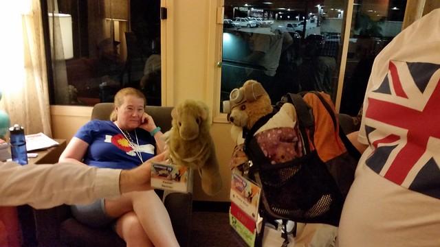 Bear Meets Camel