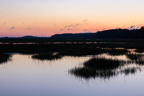 huntingtonbeachstatepark landscape nature southcarolina spring sunrise
