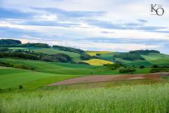 Landschaft Pfälzer Wald  #fotografie #photography #wildlife #foto #portrait #landscape #bilder #horse #pferd #natur #oehler_photography #germany #alpen #feld #frühling #nature #raps #wasser #landschaft #picture #travel #world #tiere #biene #blume #sonnenu