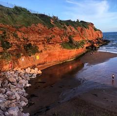Rex cliffs
