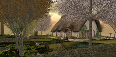 .. the cottage ..