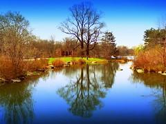 Beautiful Day at Lake