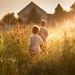 sunny days came by iwona_podlasinska