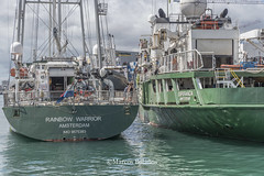 MBP_Greenpeace_Esperanza_&_Rainbow_Warrior_27May2017_14