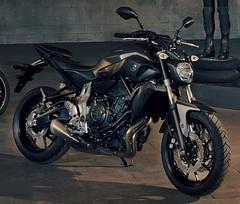 Yamaha MT-07 700 2015 - 3