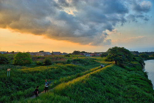 grass sunset evening gold orange people riverside bank