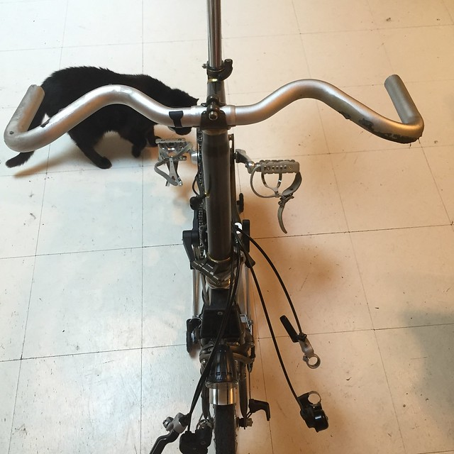 Removal of Brompton butterfly bars