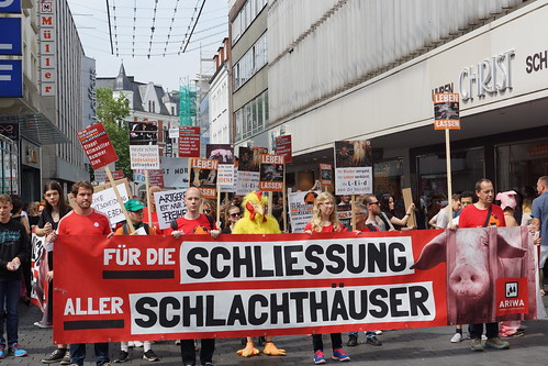 Bielefeld für die Schließung aller Schlachthäuser 2017