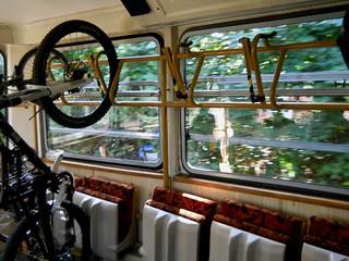 On the Tram, Buda Hills