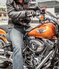 Harley-Davidson 1690 SOFTAIL FAT BOY FLSTF 2014 - 9