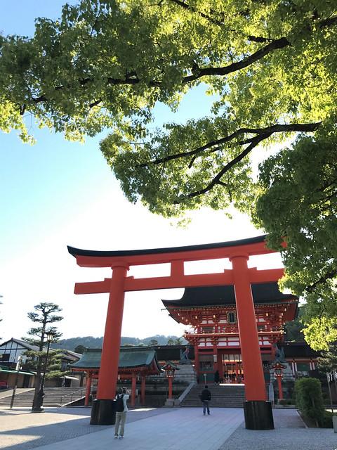 fushimiinaritaisya05