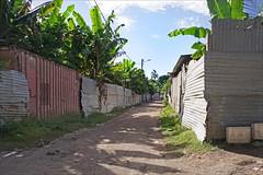 84% de la population vit sous le seuil de pauvreté (Labattoir, Mayotte)