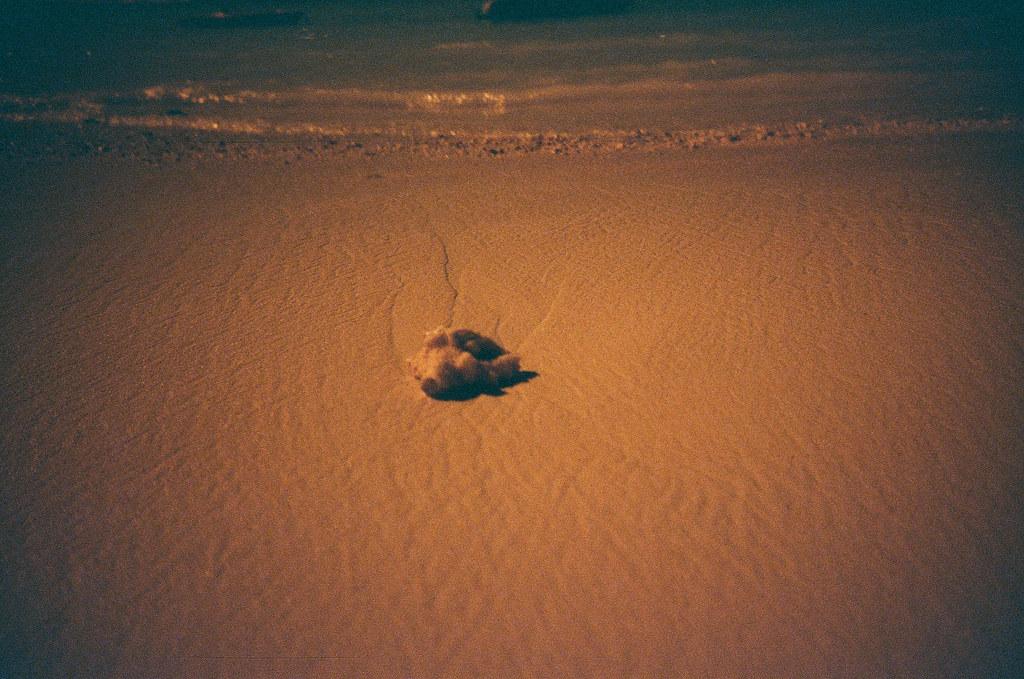 Guam, US / Redscale / Lomo LC-A+ 小小的世界裡,整片沙灘上出現了我想追求的事物,但及忙著追趕,才明白有些東西只是短暫停留。  我說的是沙灘上的足跡還是我心裡的傷痛。  每一個,都希望不要停留太久 ...  Lomo LC-A+ Lomography Redscale XR 50-200 35mm 6540-0026 2016-11-05 ~ 2016-11-08 Photo by Toomore