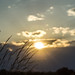 Sunset by littlefishworm2