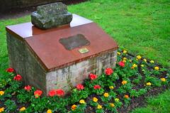 Tonbridge Lions Club flower bed