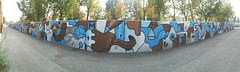 painting for picturin at parco dora torinoottograph amsterdam #painting #ottograph #mural