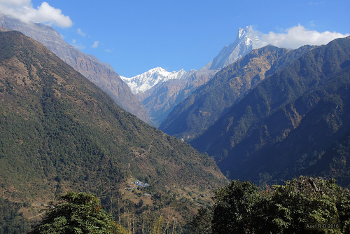 annapurnaiii chhromrong machhapuchhre montagnes nepal