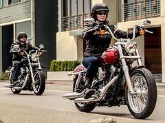 Harley-Davidson XL 883 L Superlow 2011 - 19