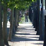 Dockside walkway